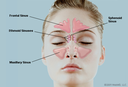 how to clear sinuses with warm salt water