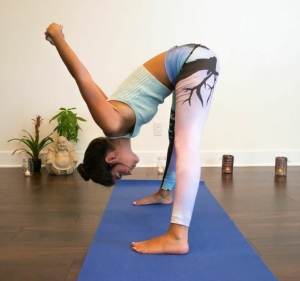 vedix yoga 2