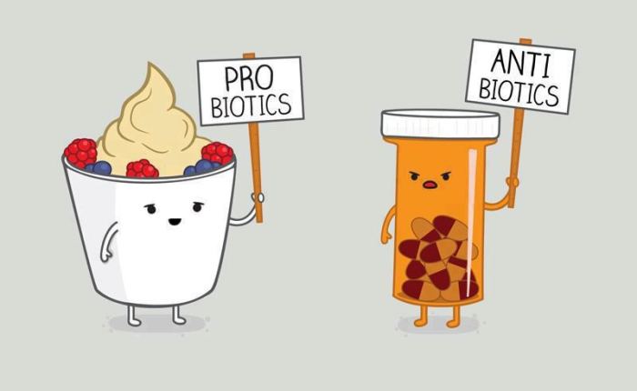 Probiotics-Antibiotics