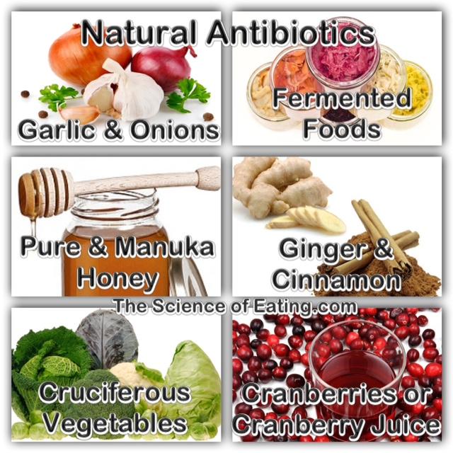 Foods-Natural-Antibiotics